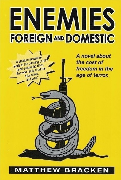Enemies Foreign and Domestic book cover