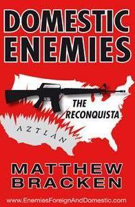 Domestic Enemies cover